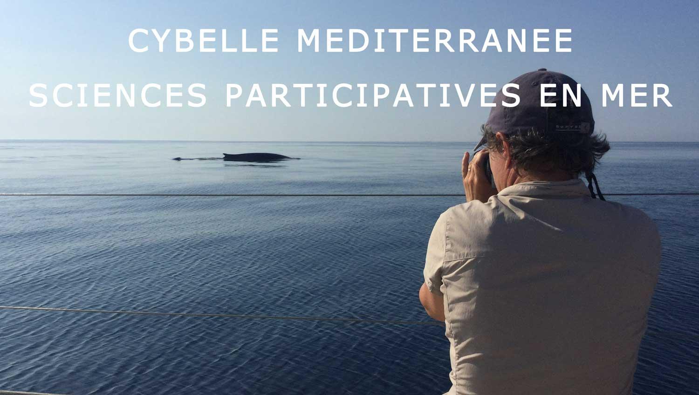cybelle mediterranee