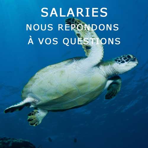 CES salaries
