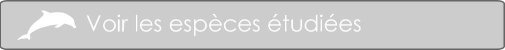 especes2 button