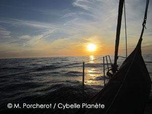 Synopsis Cybelle Planète 2015