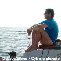 Synopsis Cybelle Planète 2013
