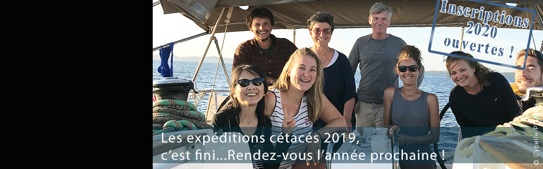Registration open cetacean expeditions 2020