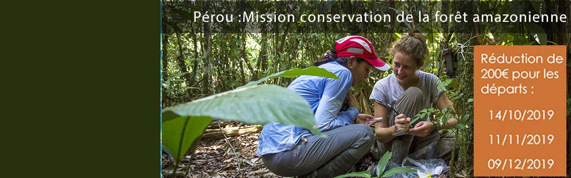 Mission Peru: lower mission costs