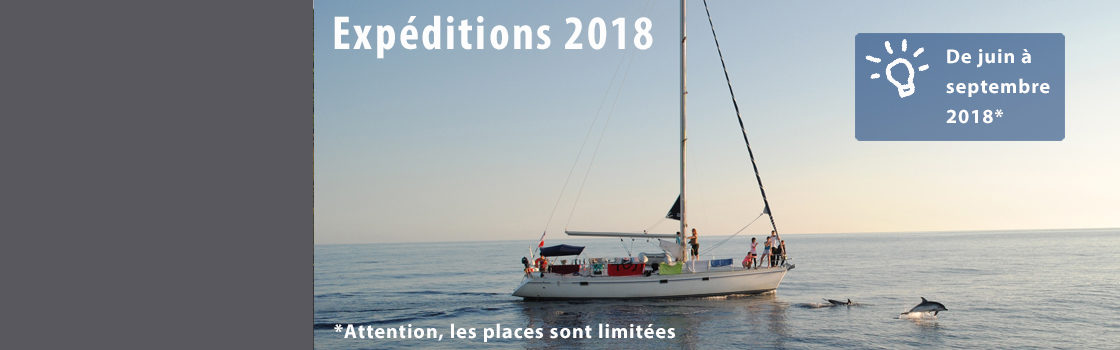 2018 Cetacean Expeditions