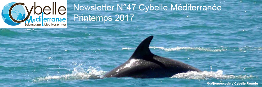 NL 47 headbands Cybelle Mediterranean Printemps2017