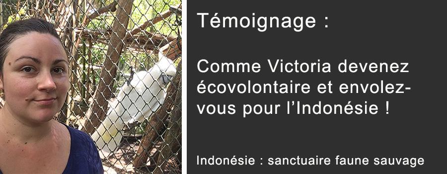 NL 50 Testimony Victoria