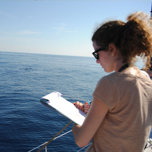 Participatory science Sea