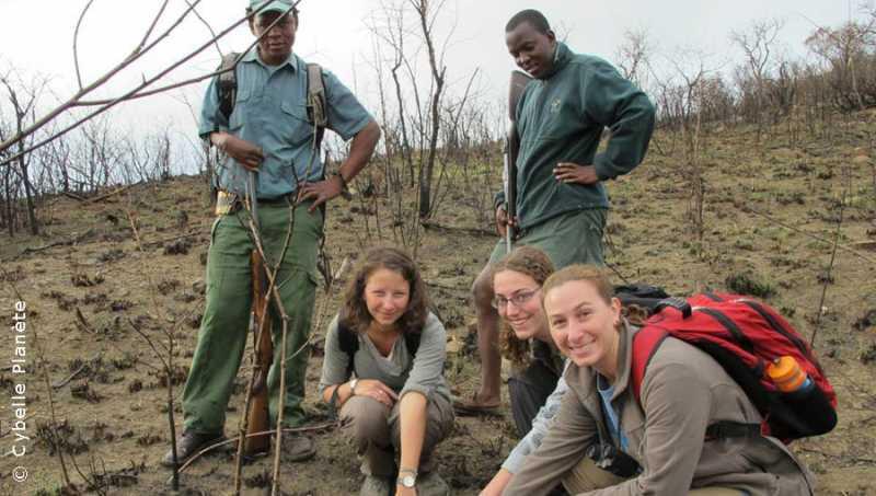 Ecovolontariat Study of terrestrial fauna