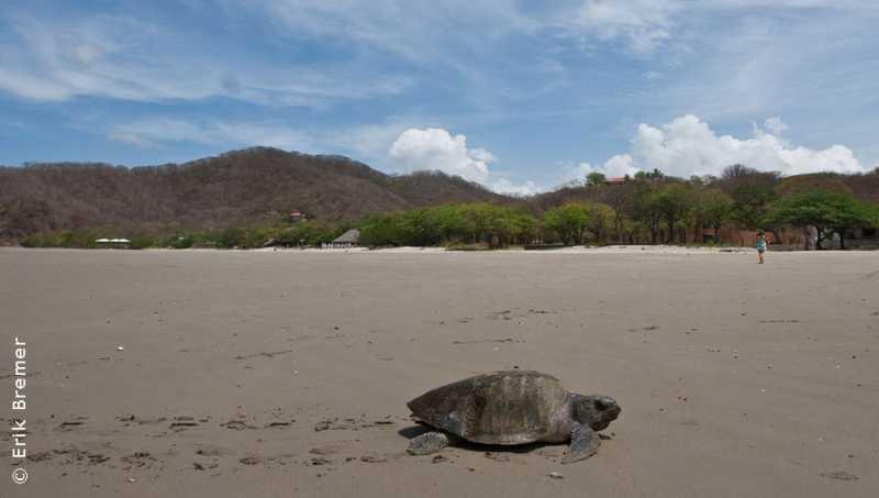 Nicaragua eco-volunteering