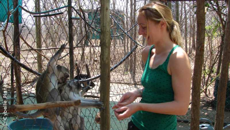 Ecovolunteering Animal care