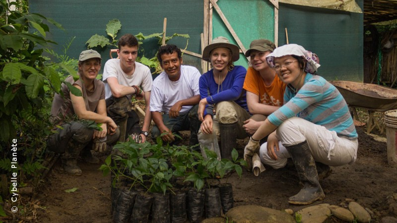 Conservation and Research in the Amazon in Peru