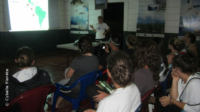 Conservation of hawksbill turtles in Nicaragua
