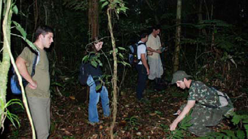 Scientific expeditions to Peru