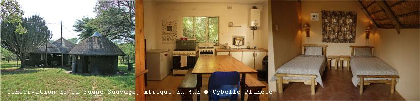 Copyright Cybelle Planète
