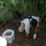 Mission Nicaragua turtles